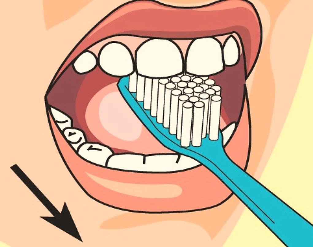 шикарные чистка зубов картинки прикольные каждой хозяюшки данный