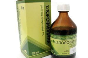 Хлорофиллипт для десен: состав, применение, лечение и профилактика